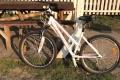 Розыск велосипеда Alpine Element - Киев