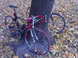 Продам Focus CAYO карбон - Киев - шоссейный велосипед rigid 18950 грн.