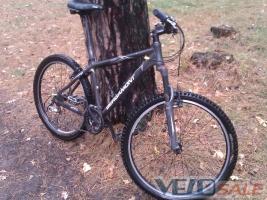 Розшук велосипеда Bergamont ICEE - Київ